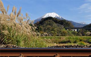 写真:大山